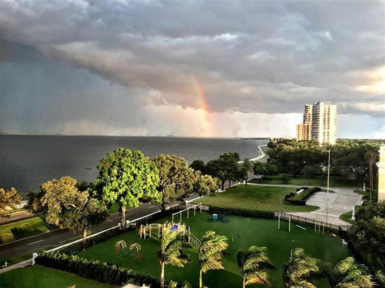 #Rainbow off #BayshoreBlvd. #tampa #tampabay #southtampa #palmaceia