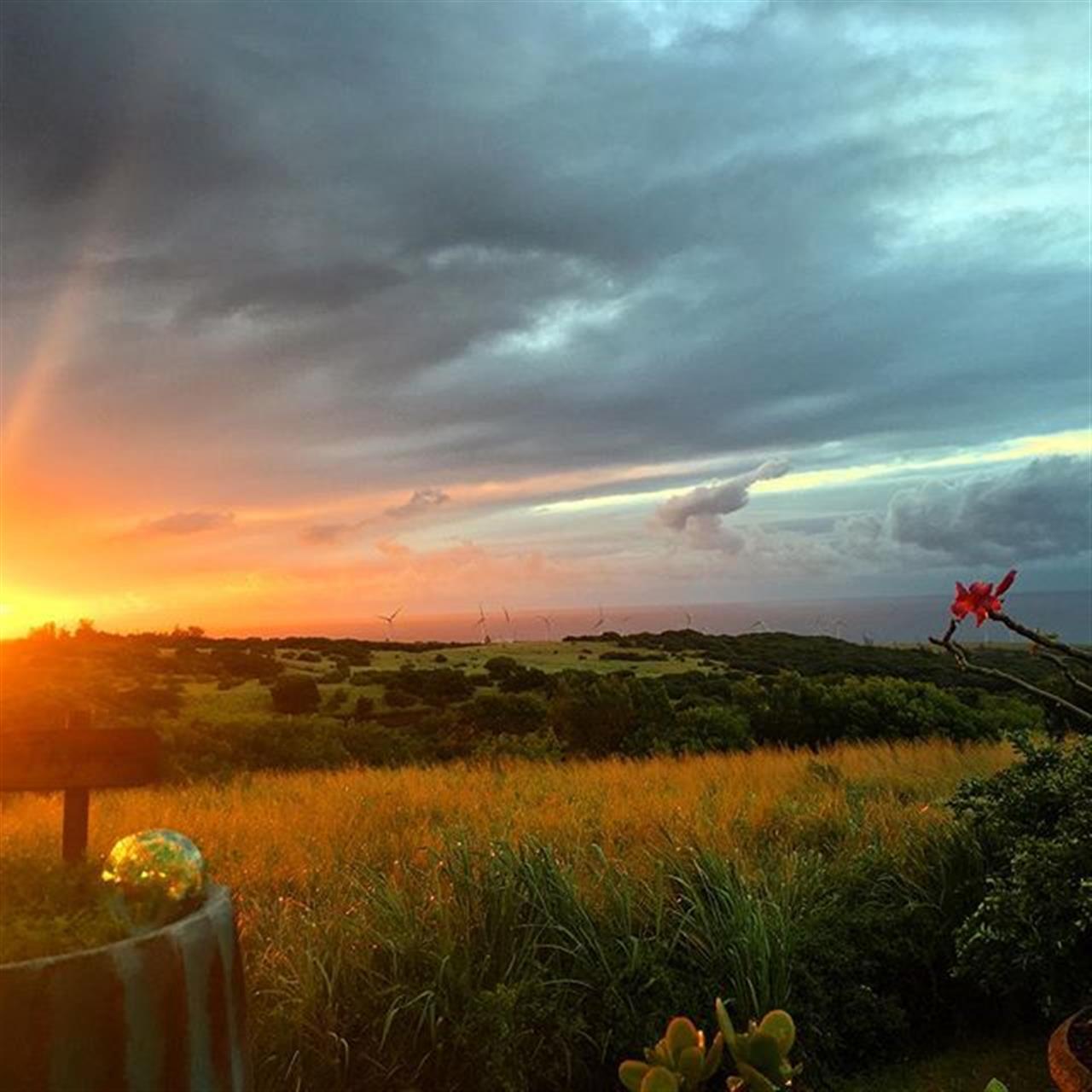 Hope y'all had a wonderful weekend! Sending you a #SundaySunset goodnight! #derbyfarm #kohala #hawaii #bigisland