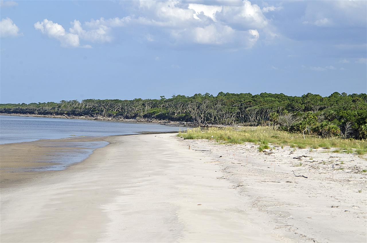 Amelia Island, FL_Recreation_Amelia Island State Park