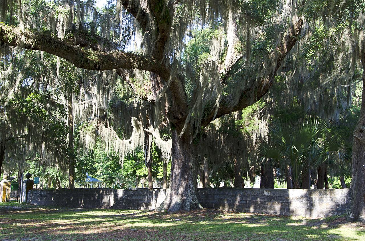 St. Marys, GA_Culture_Oak Grove Cemetery