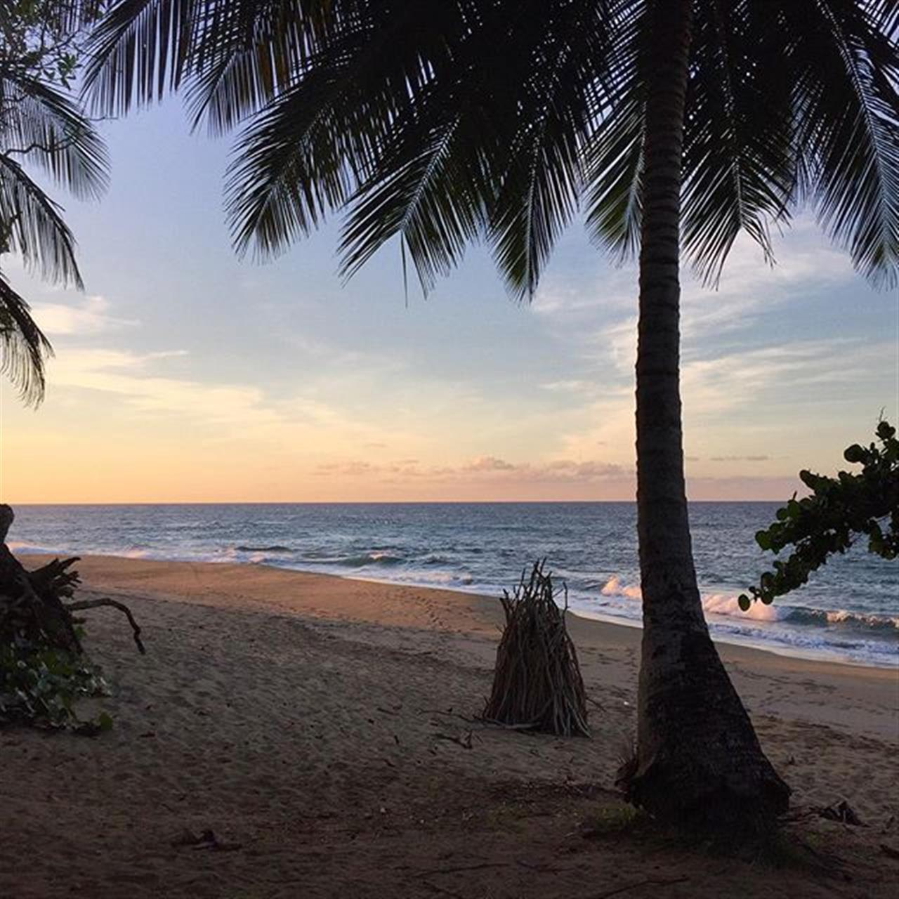 Friday evening on the north coast of the Dominican Republic #dominicanrepublic