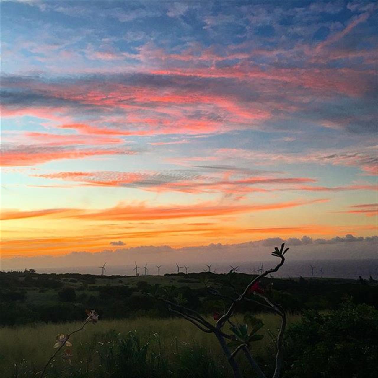 A wonderful sunset on the farm to end a wonderful day! #derbyfarm #kohala #hawi #hawaii