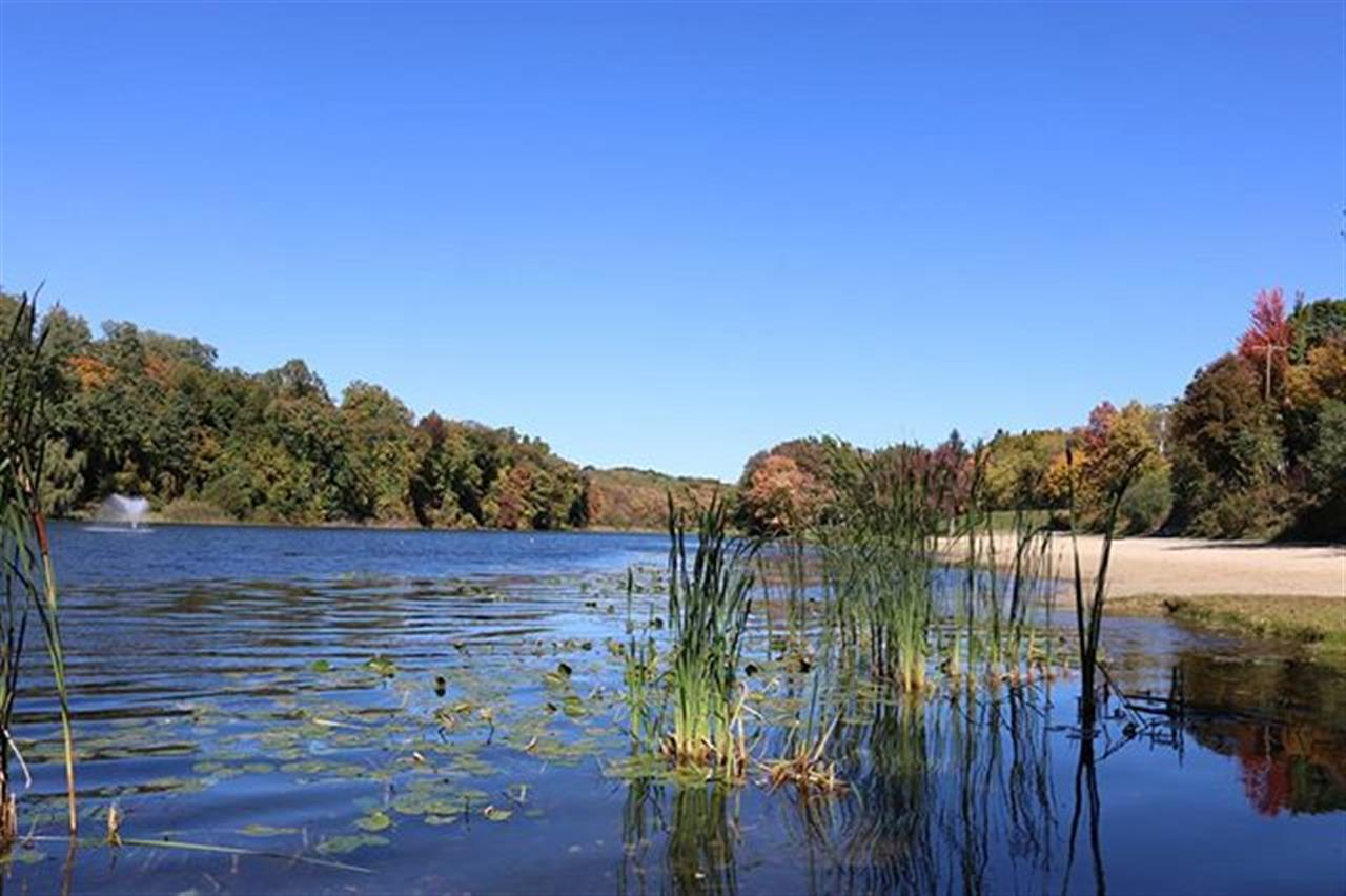 #sparklelake #upstateny #lake #blue #bluewater #beach  #trees #colorfulleaves #grass #ExploreYourHood #LeadingRElocal #lilypads #bluesky #itsamazingoutthere #yourshot #water #naturelover #photooftheday #photography