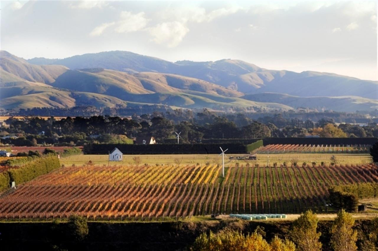 Martinborough, North Island, New Zealand