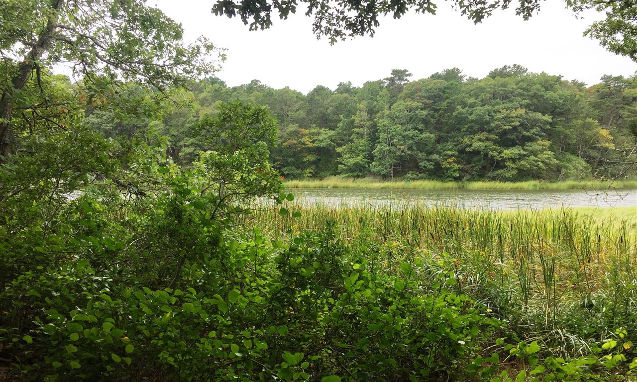Mashppe, Santuit River Preserve