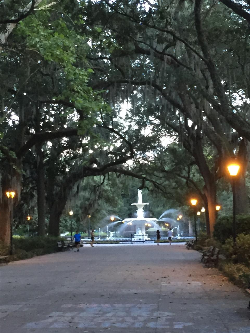 Under the Canopy in Forsyth Park