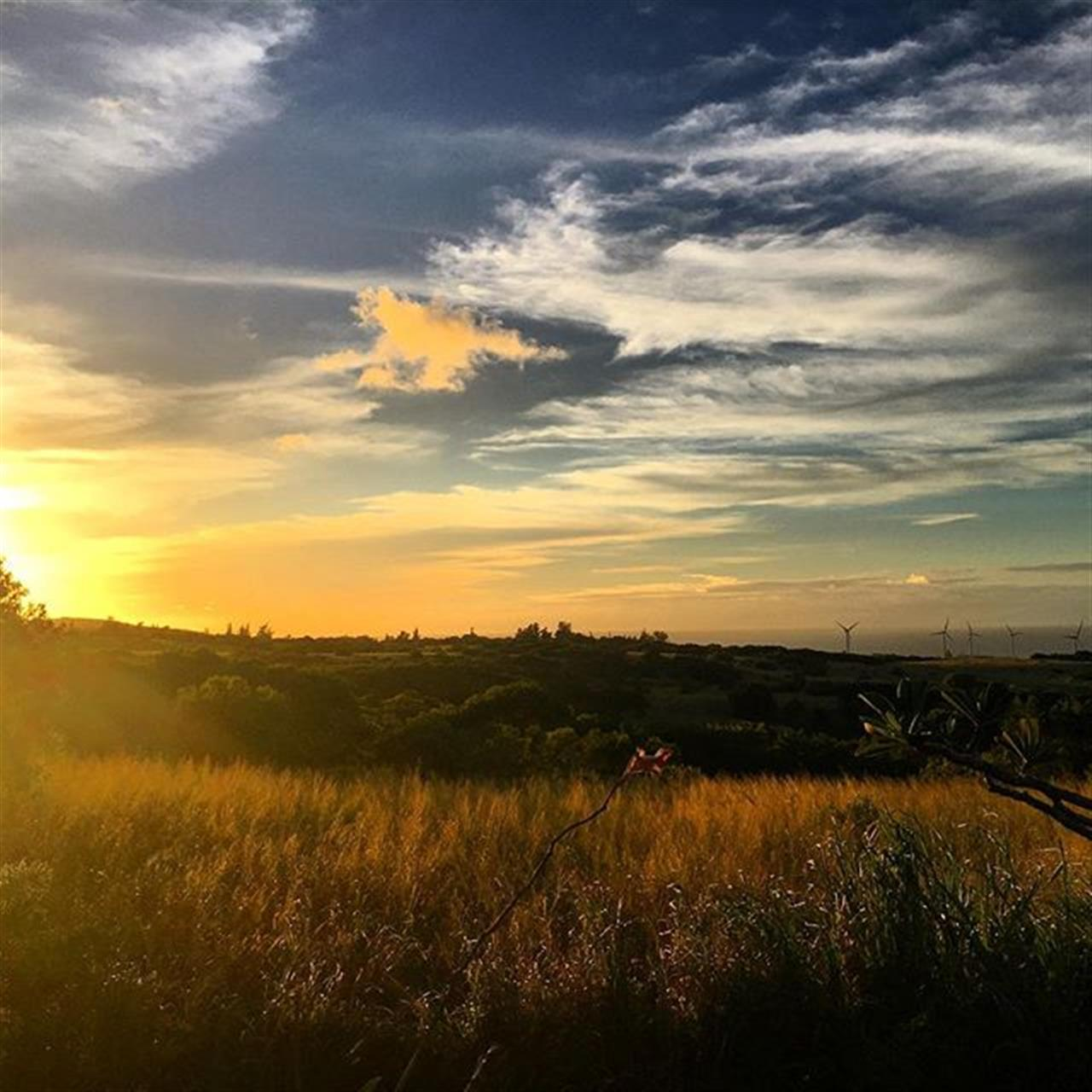 What a lovely start to a Sunday evening! ? A Sunday evening well spent brings a week full of content!  #sunset #derbyfarm #beingbrooke #sundayfunday #hawi #kohala #beemary #hnnsunrise #leadingrelocal