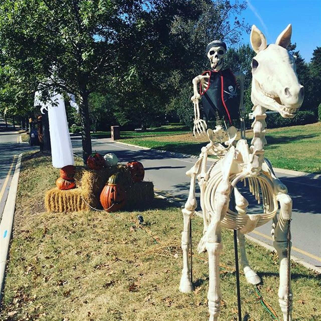 Halloween is only a week away and many neighborhoods are getting in the spirit! ?? #halloween #middletennessee #nashvillerealestate #leadingrelocal