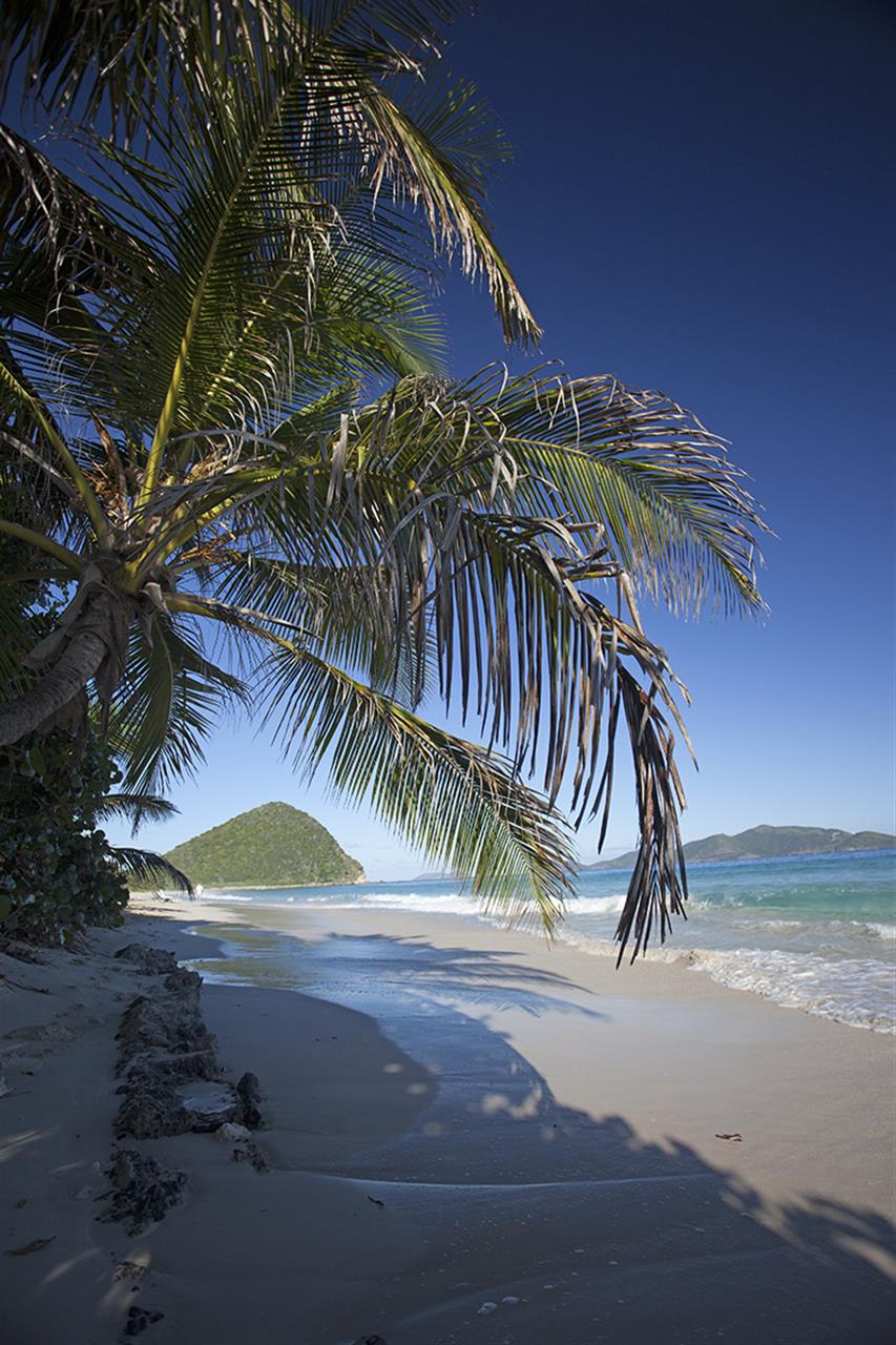 Long Bay, Tortola Courtesy of Smiths Gore BVI Ltd.