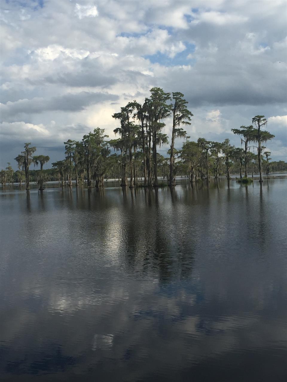 Banks Lake, Lakeland, Georgia