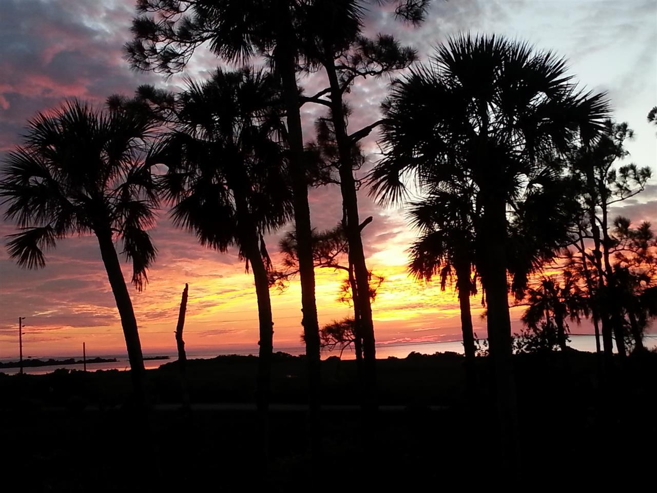 Hernando Beach by Debbie Francis