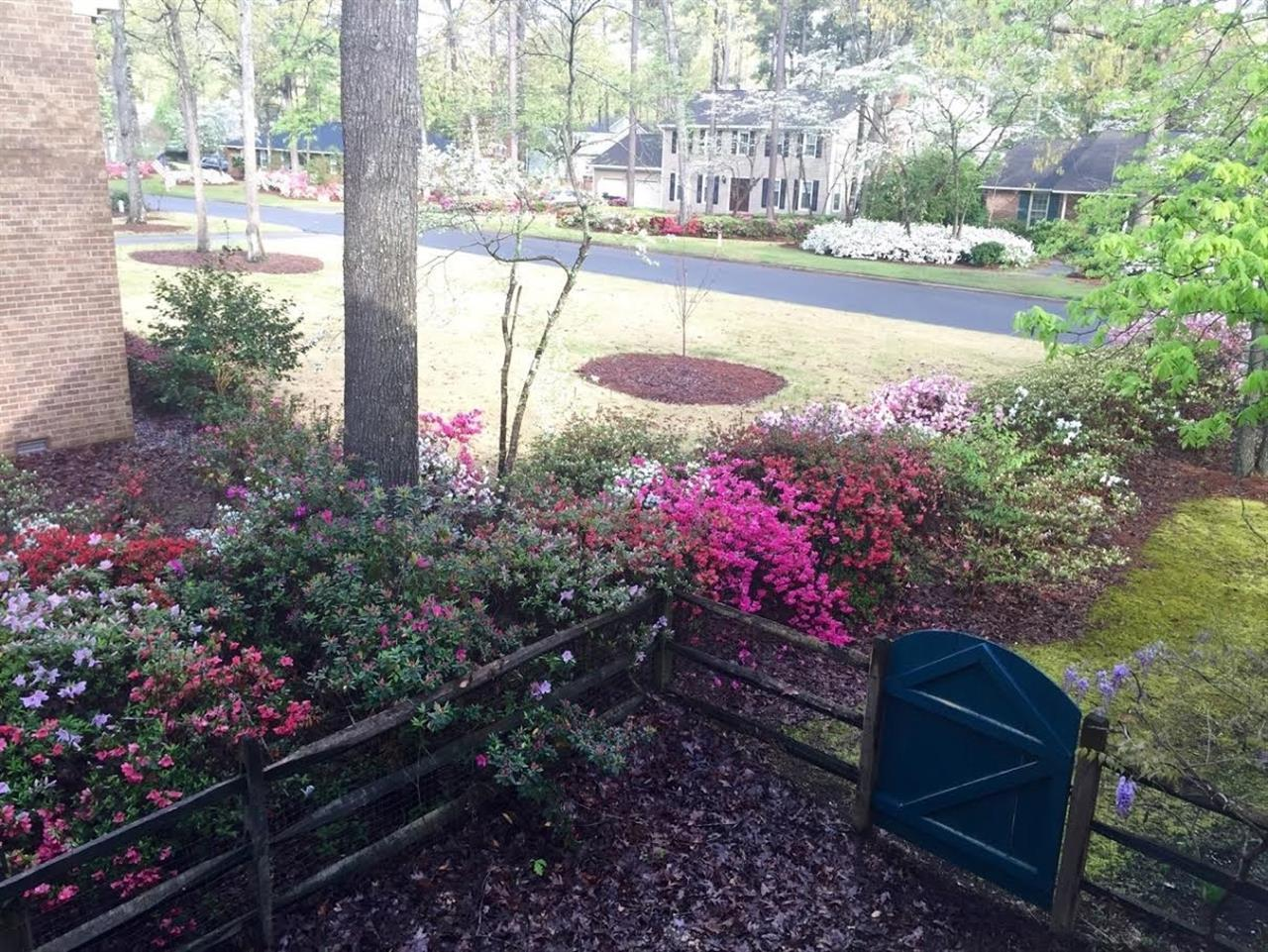 Spring always promises a colorful show of azaleas in Fayetteville, North Carolina.  Submitted by Lee McMillan