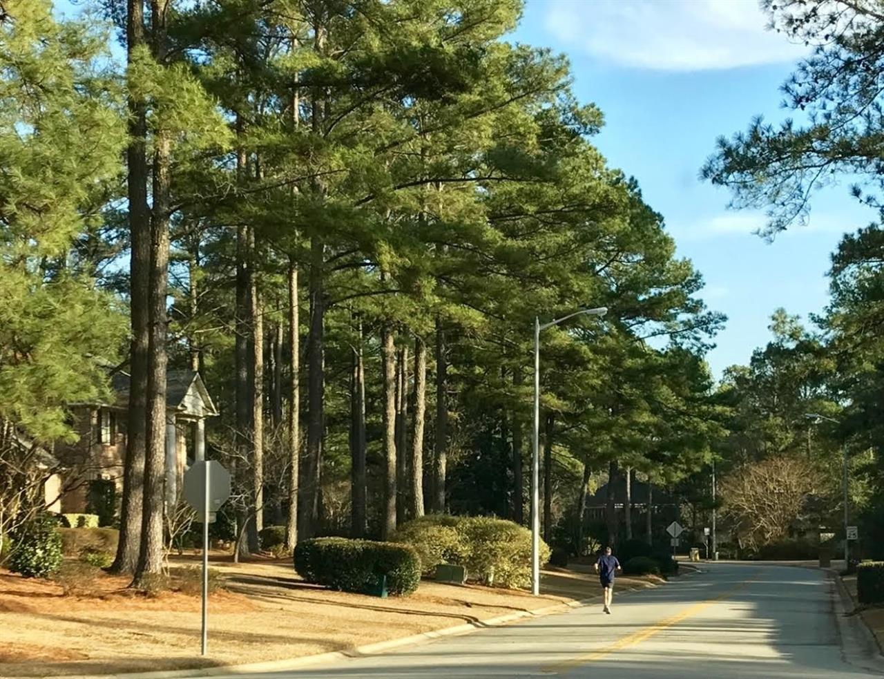 Tree-lined neighborhood in Fayetteville, North Carolina.  Submitted by Lee McMillan