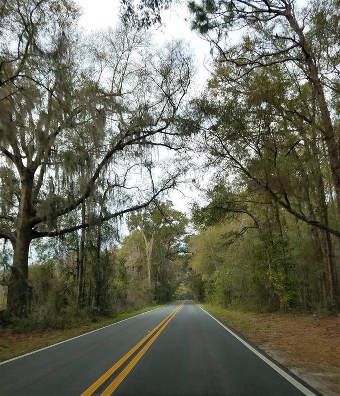 Marion County Florida Scenic Road