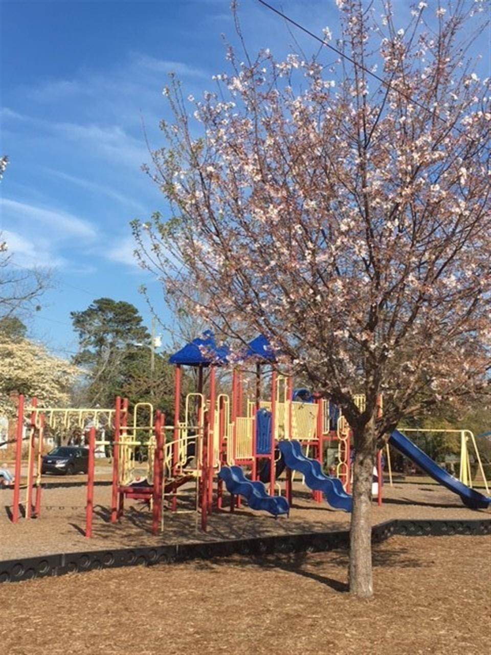 Playground at General Lee Park, Fayetteville NC
