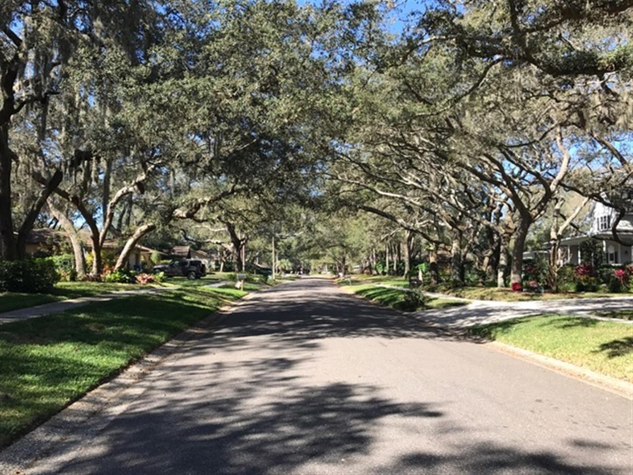 Area: Carrollwood, FL Agent: Allison Dechristopher
