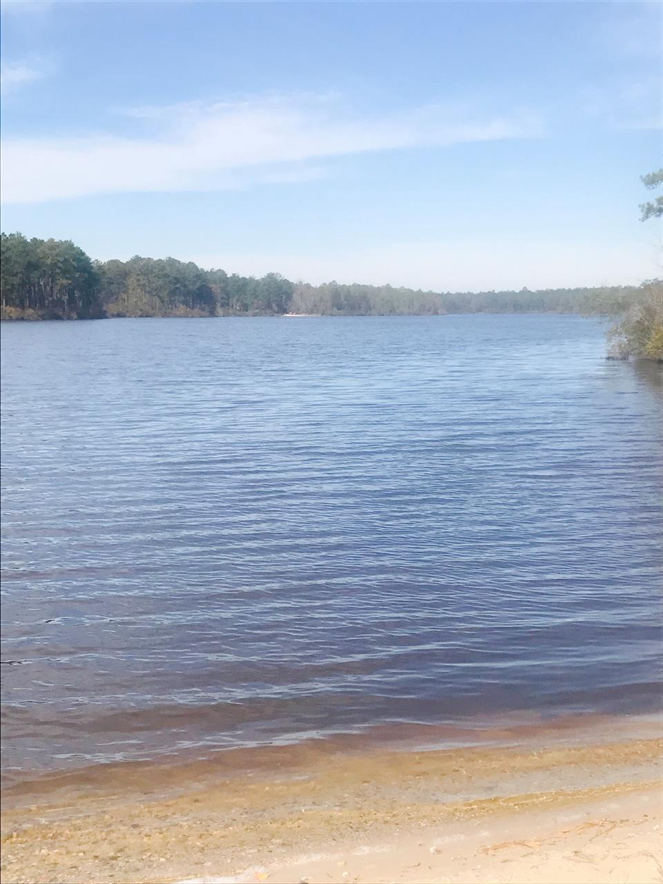 Mott Lake on Fort Bragg in Fayetteville, North Carolina.  Submitted by Sabrina Thornton.