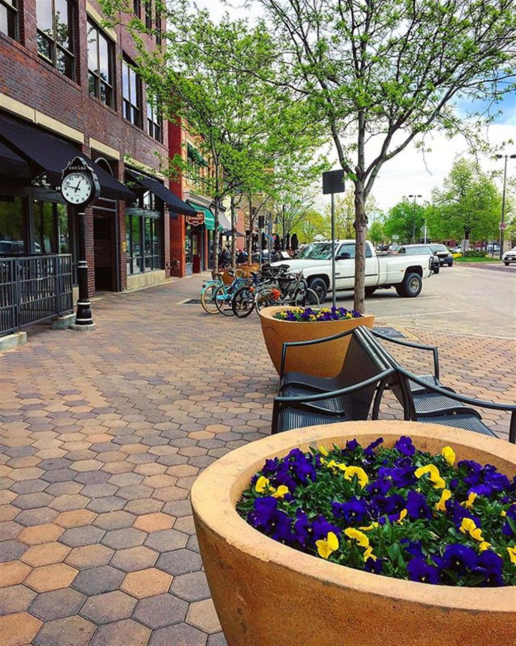 Old Town Fort Collins Spring