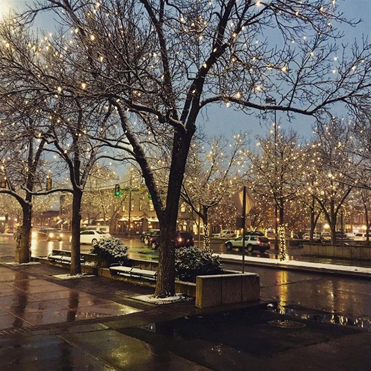 Old Town Fort Collins Holiday Lights