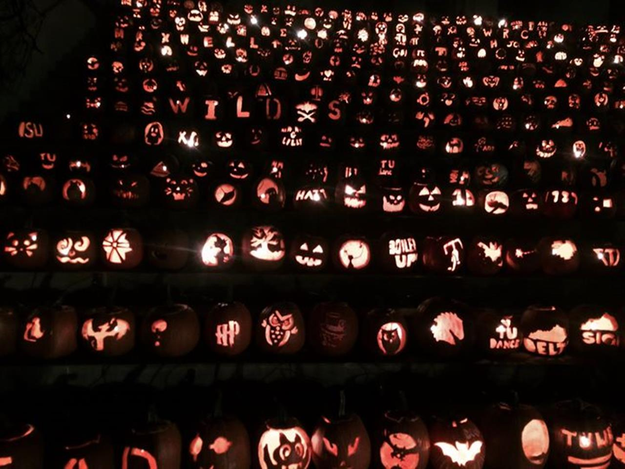 This is Halloween this is Halloween... Beautiful display at Transy.