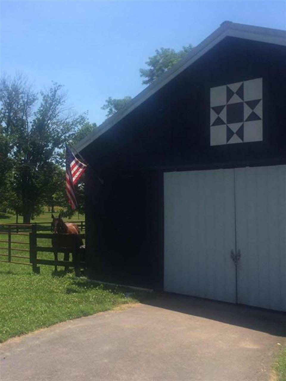 My horse Gallant and the American Flag in beautiful KY.