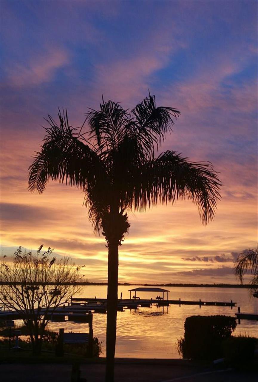 Lake Dora-Mount Dora, FL