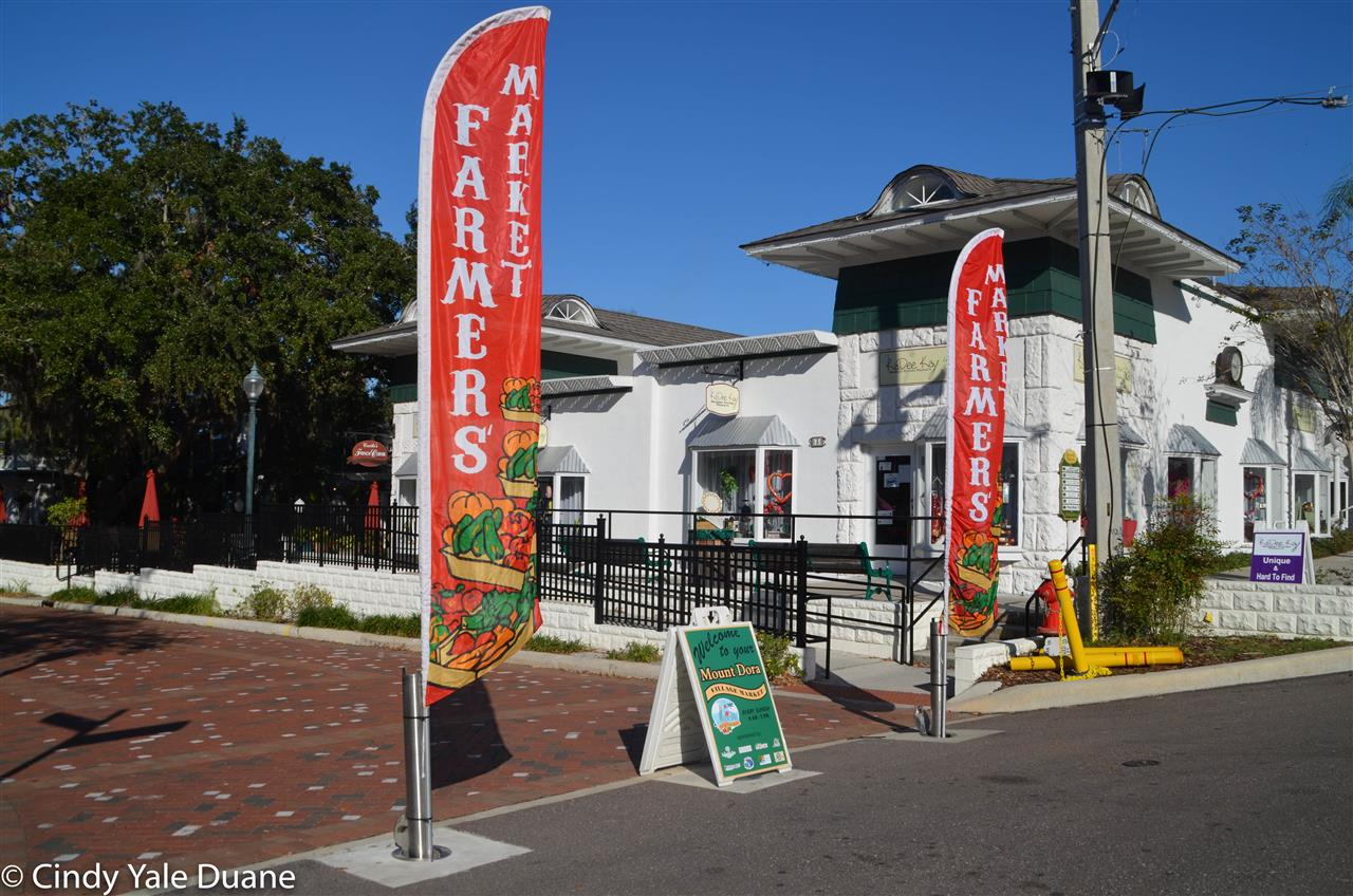 "Mount Dora's Village Market is one of many reasons why Mount Dora is ""Someplace Special""."