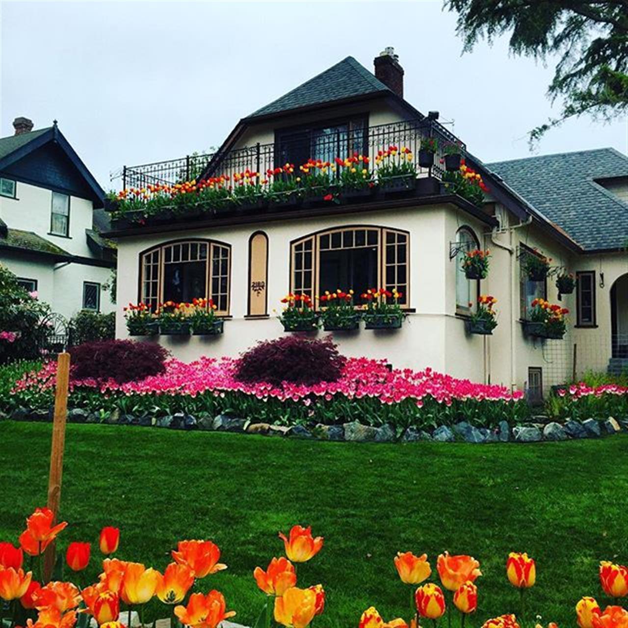 #oakbay #flowerpower #beachdr #realtor #LeadingRElocal #spring #tulips