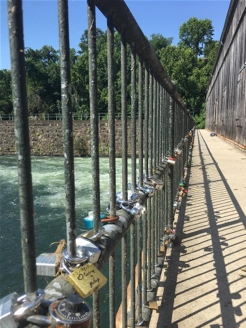 Hundreds of locks decorate the rails on the bridge over the Augusta Canal.  It's one of the best places in Augusta, GA to ride your bike!
