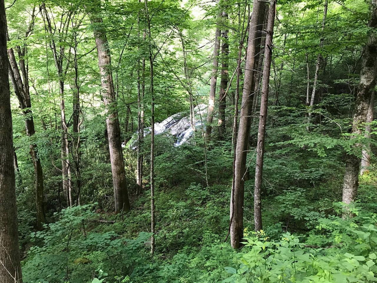 Nantahala National Forest in Graham County, NC