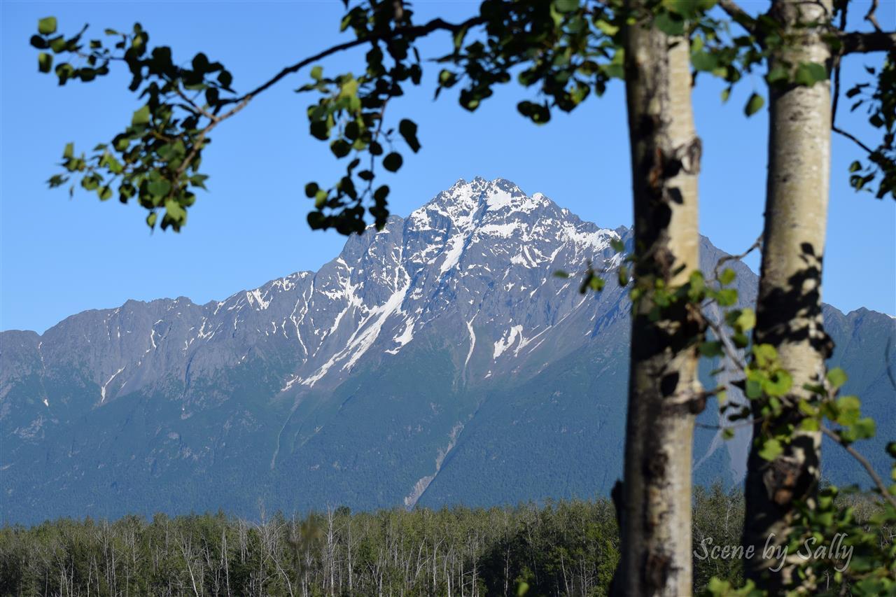 View of Pioneer Peak, Palmer, Alaska