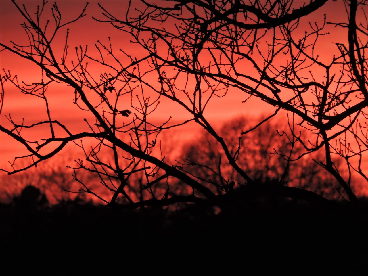 Sunset, Gentry, Arkansas
