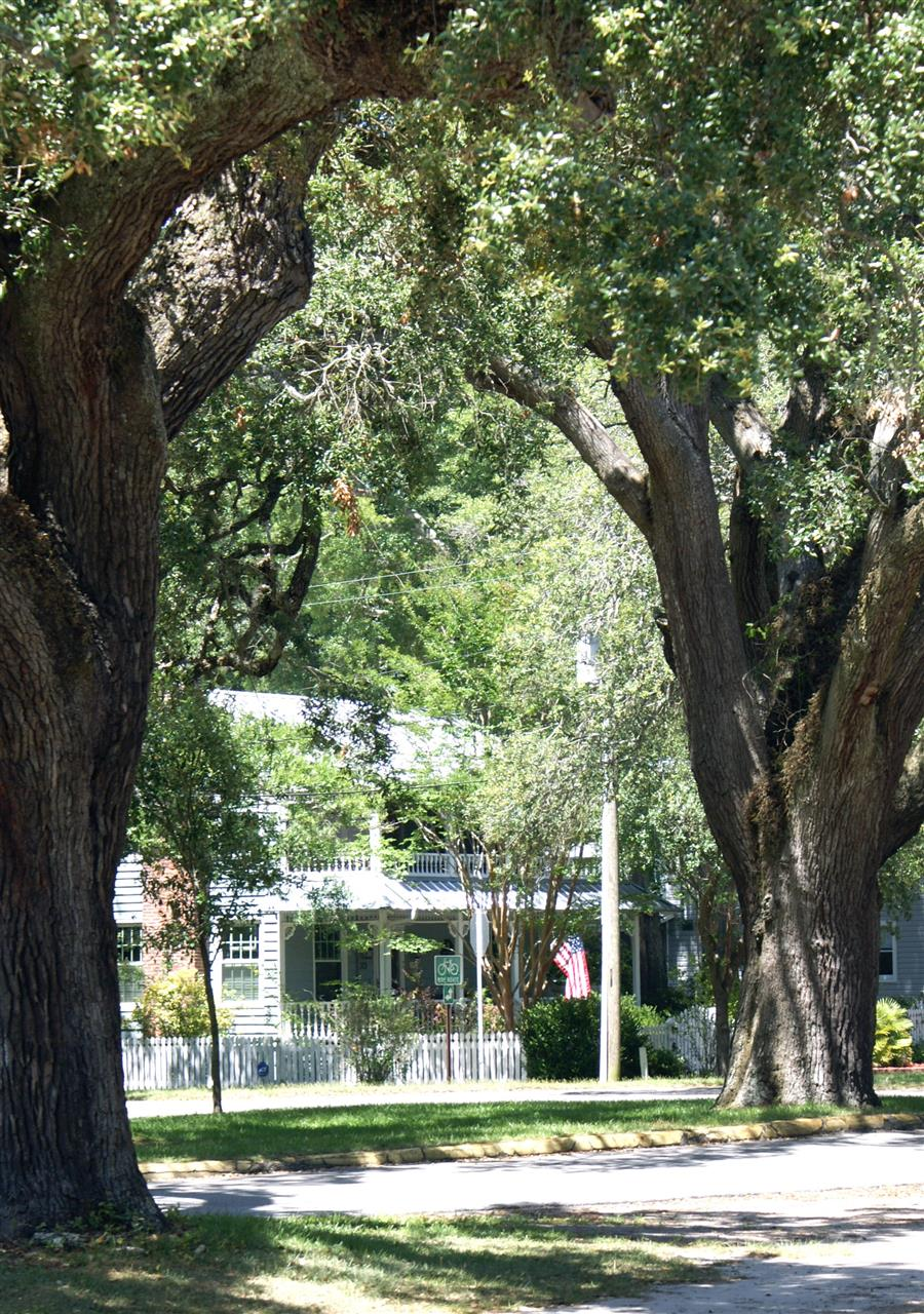 The streets surrounding Franklin Square Park in historic Southport, NC are lined by majestic, evergreen, live oak trees.  Bicycle paths trace a scenic route from the Fort Fisher Ferry all the way to the mouth of the Cape Fear River.