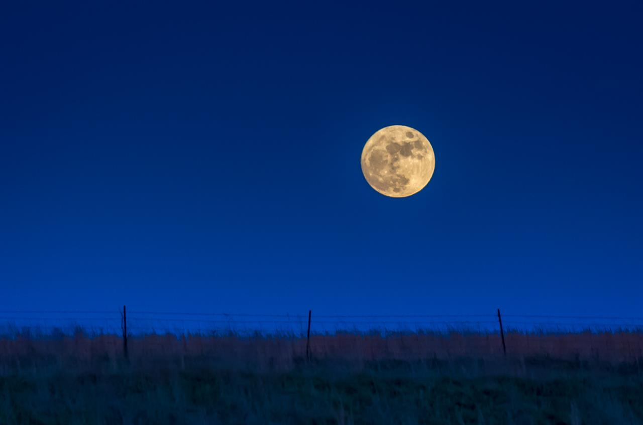Harvest Moon over Field in Cape Girardeau County, Missouri