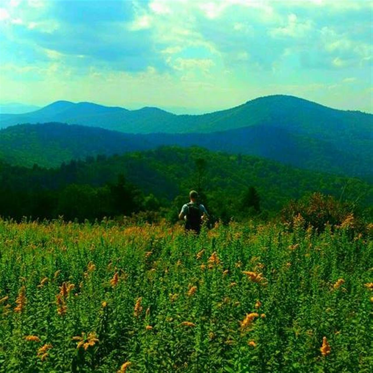 Hiking Hardy Mountain in Pisgah National Forest