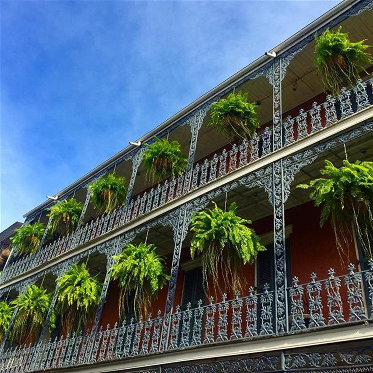 80 degrees makes for an especially #HappyTuesday in New Orleans!