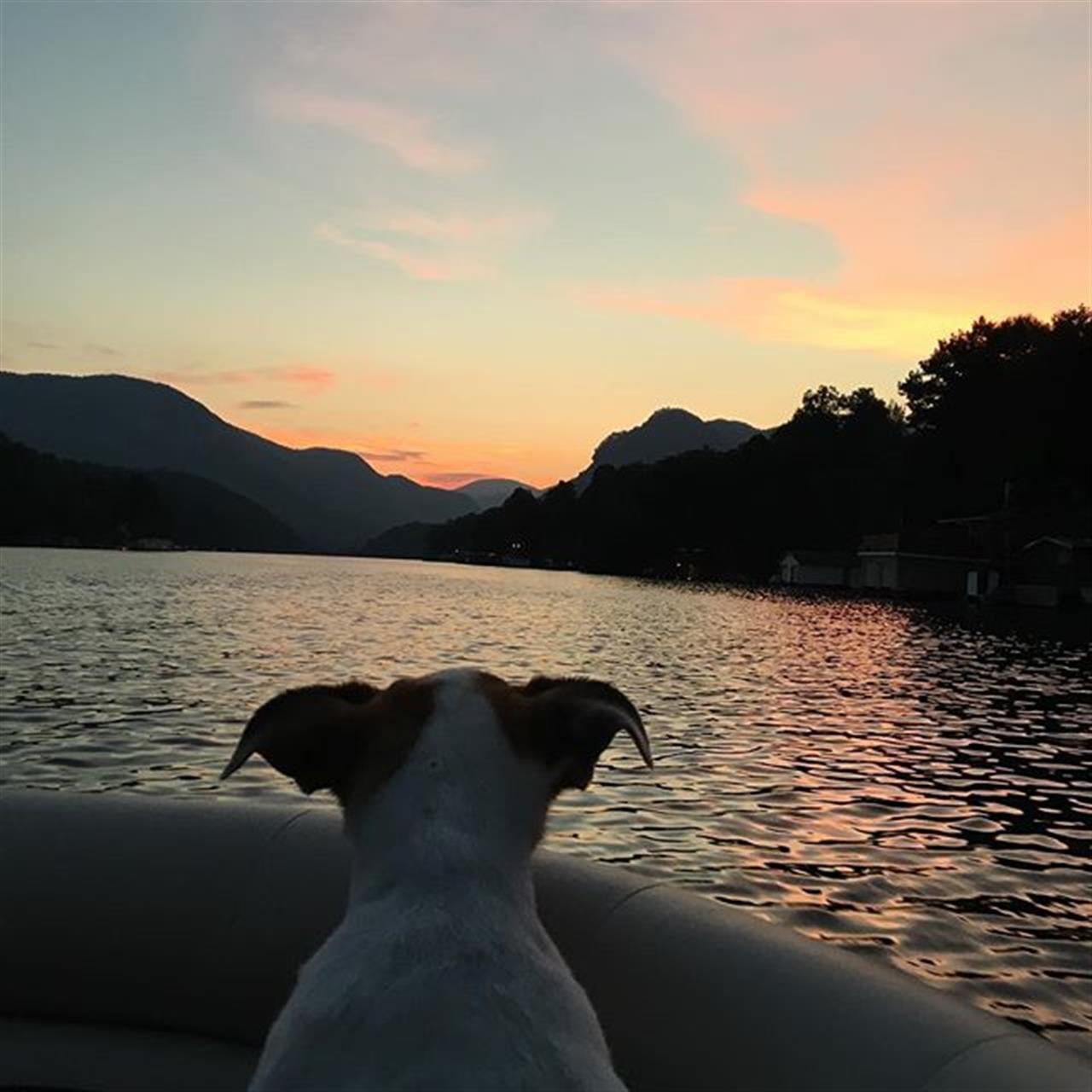 Sunset with Ding!!! #lakelure #lovewherewelive #shling #leadingrelocal