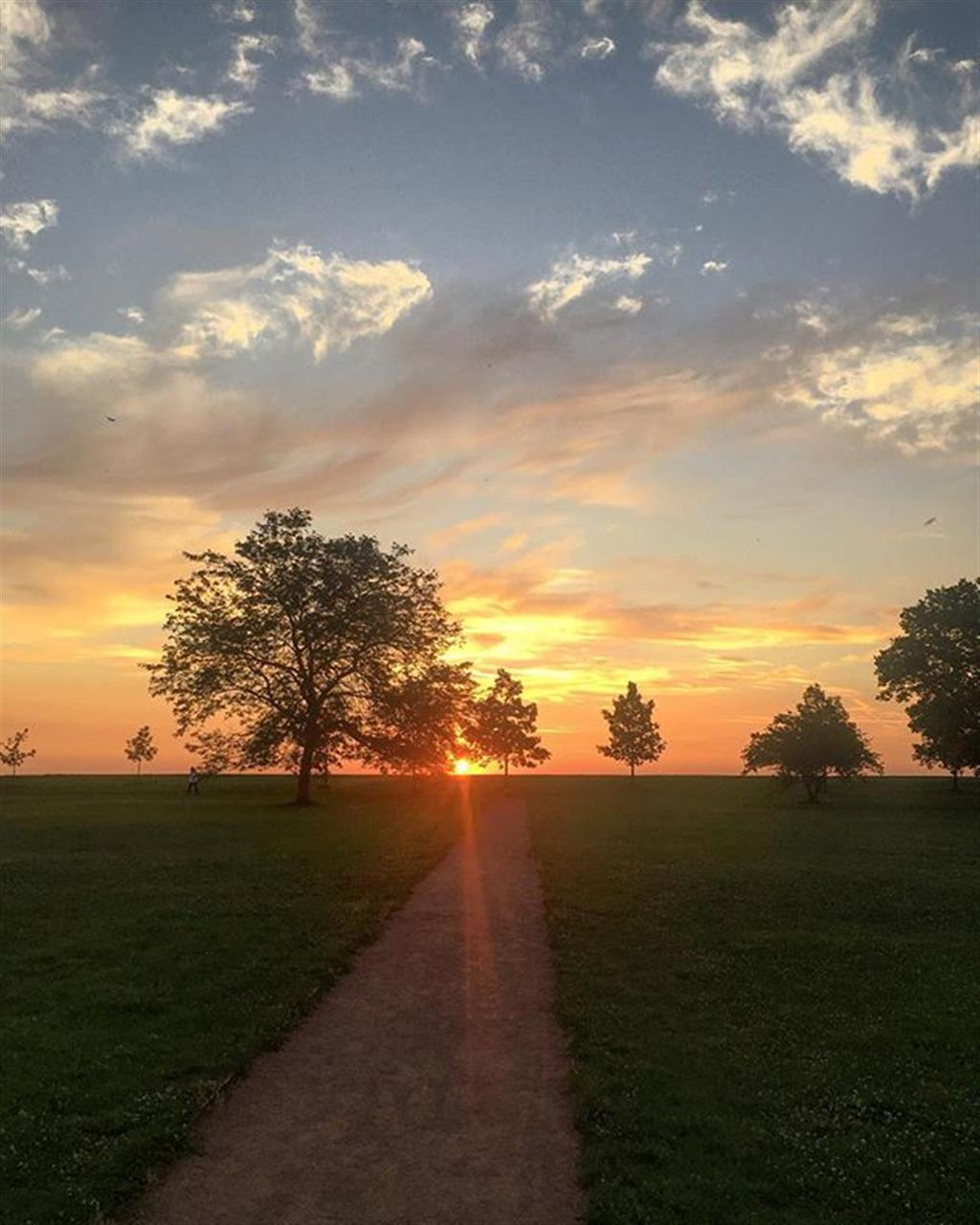 """""""She is always a novelty; for she is never the Chicago you saw when you passed through the last time."""" #chicago #sunrise #leadingrelocal #lakeview #bairdwarner #realestate #lincolnpark #northside"""