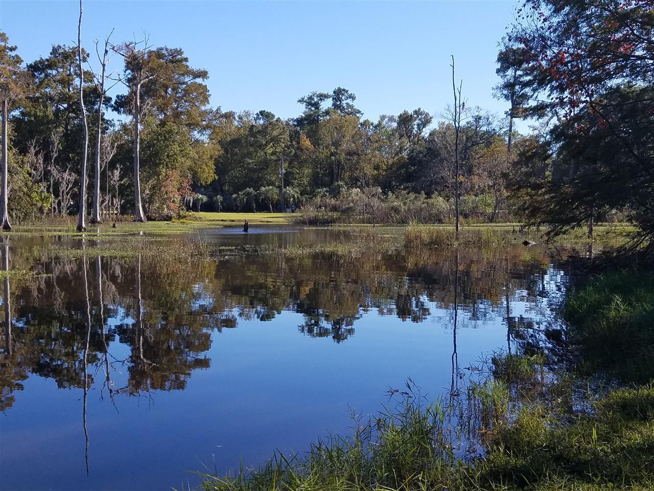 Christopher Creek.  Jacksonville, FL