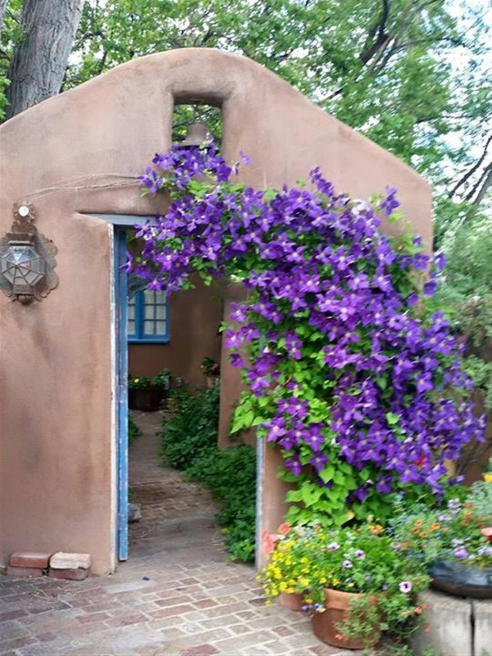 Sweet little adobe entrance in Santa Fe. A cool 70 degrees and cloudy this morning. Perfect temp. for July