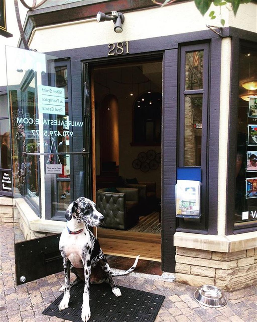 If you're in Vail Village, stop by and chat with our knowledgeable broker-in-training, Hoss. He knows all the best spots for you and your furry friends ? #livelocal #leadingrelocal