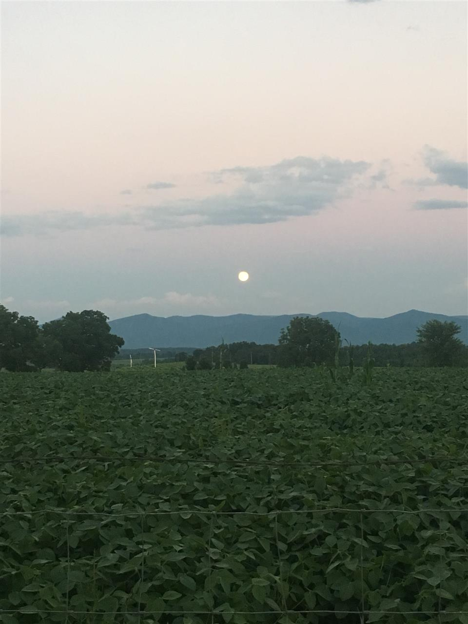 Moon peaking out over a crop field at sunset in Mt. Crawford, VA