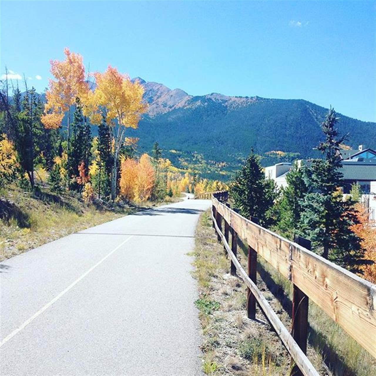 Throwback to last September. Who else is excited for crisp bike rides and brilliant aspens? #slifersummit #peepingleaves #leadingrelocal
