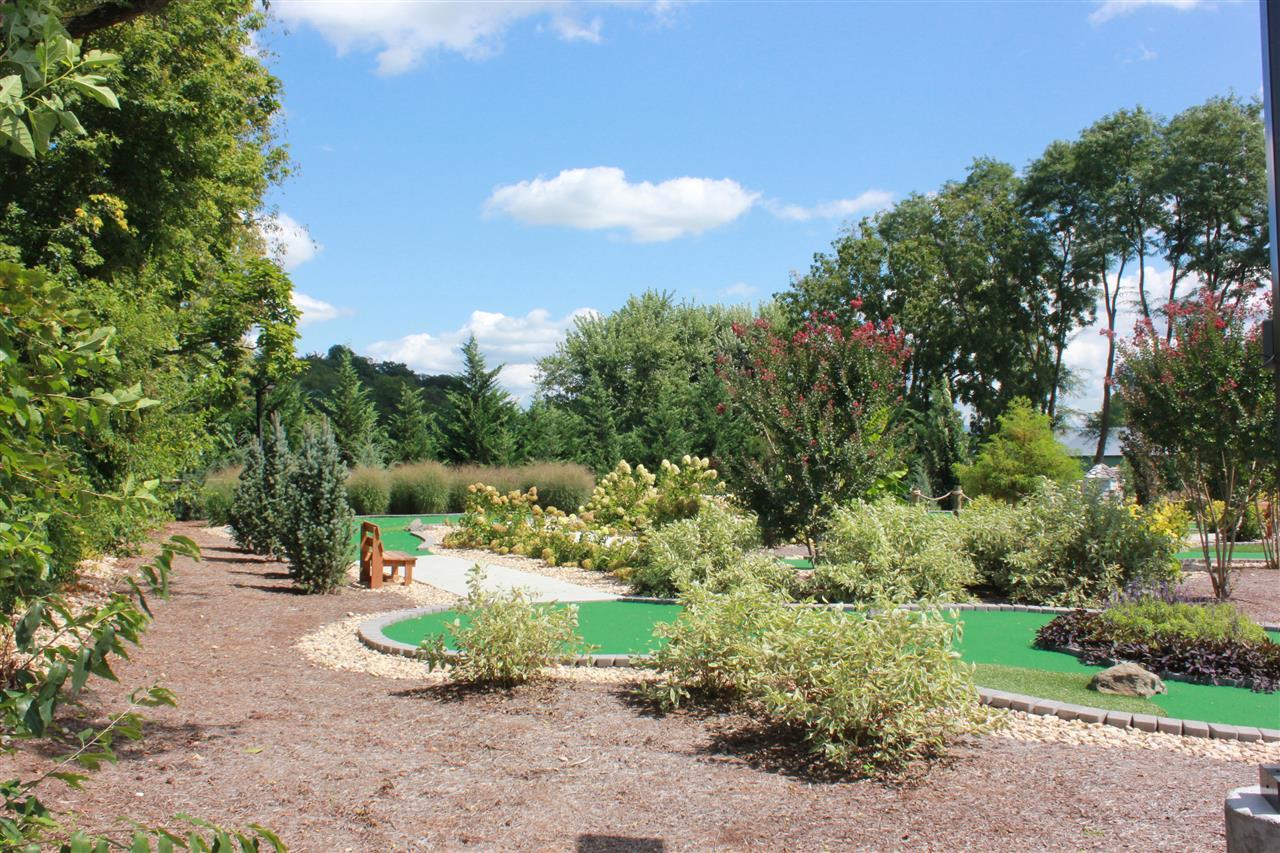 Town Mini Golf at Sandy Bottom Park Bridgewater, VA