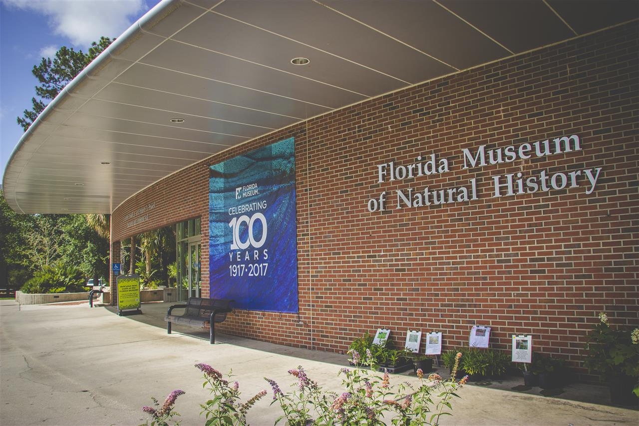 Florida Museum of Natural History 3215 Hull Road Gainesville, FL 32611 #GainesvilleFL