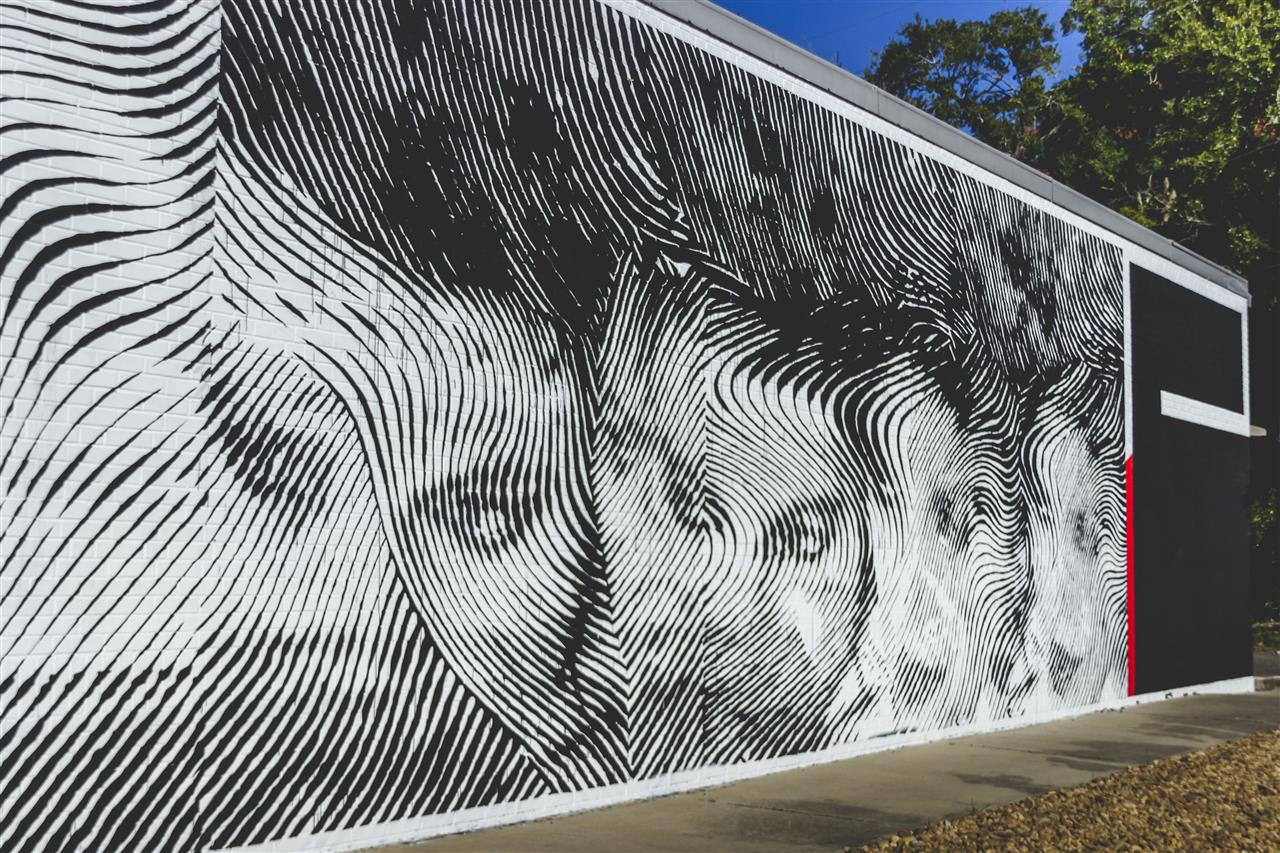 352 Walls Art in Public Places #GainesvilleFL