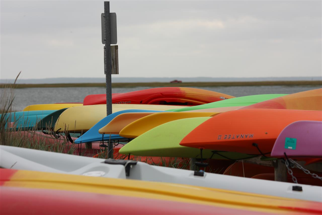 Kayaks waiting to launch into Loagy Bay, Wellfleet