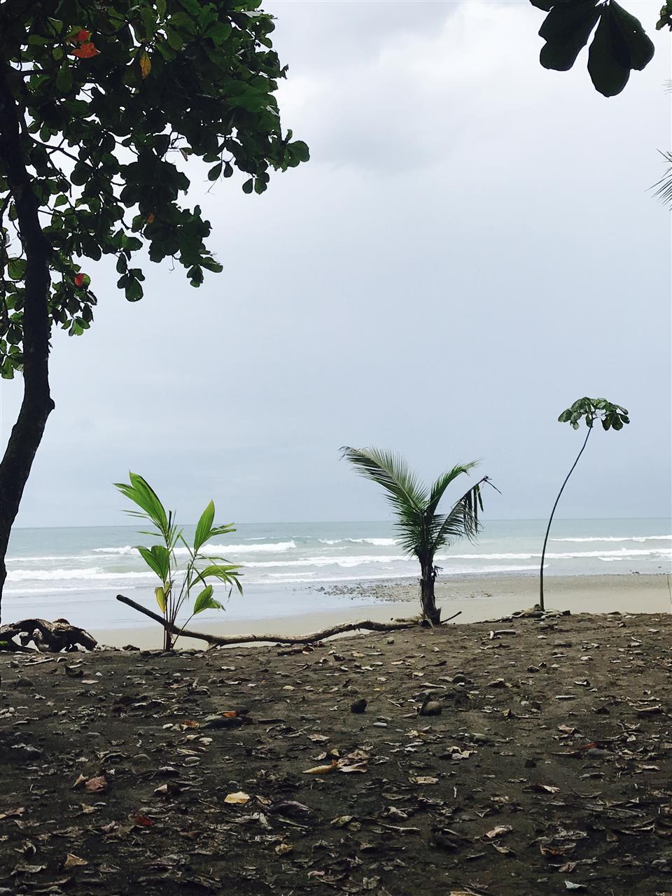 Beach, Uvita, Costa Rica