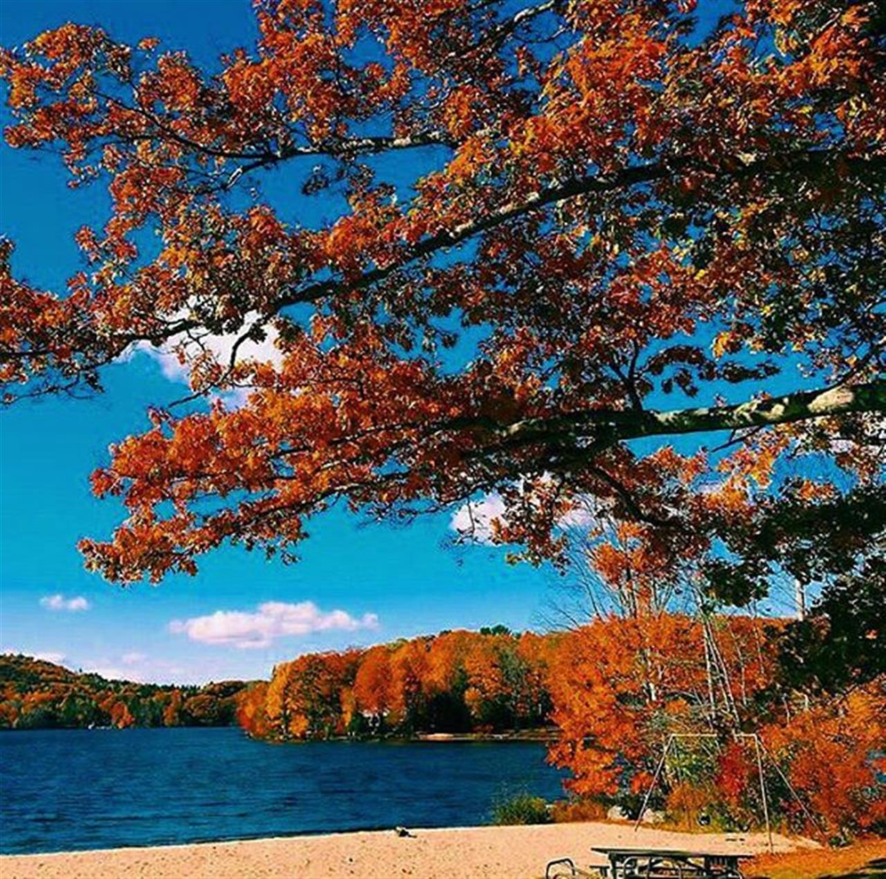 We ? the beach in the Fall ??: @kianalaroche__ ò ò ò ò ò ò ò #TheRollinsGroup #TheBeach #ShoreineRealEstate #leadingrelocal #FallInLove