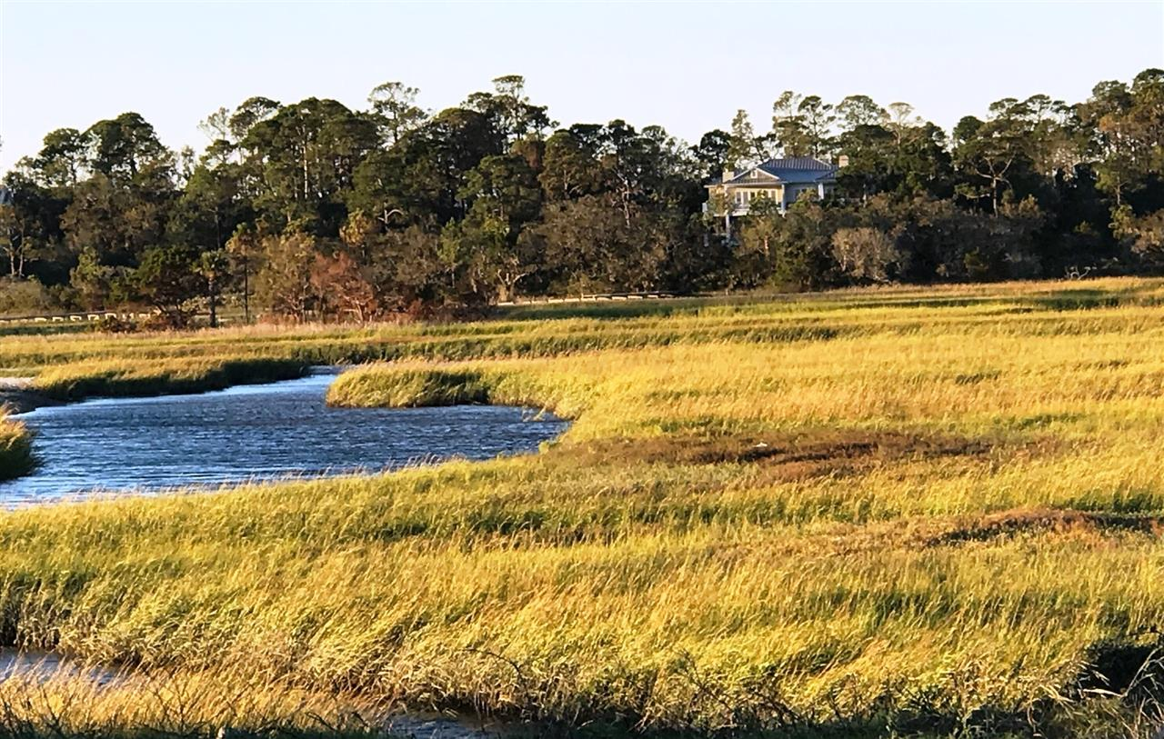 Late Autumn Afternoon, the Wetlands of North Jacksonville, Florida, USA.